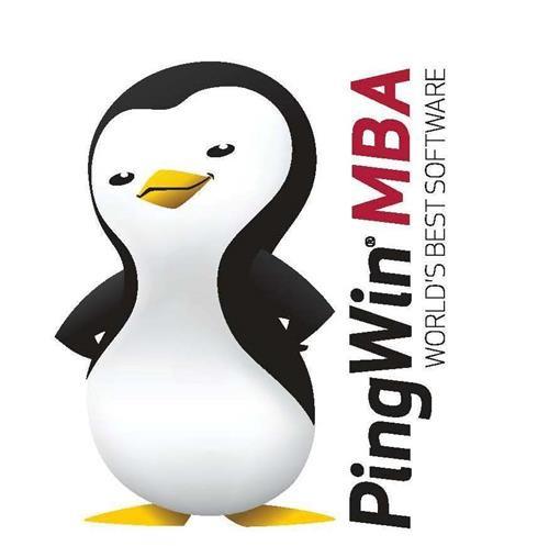Pingwin MBA